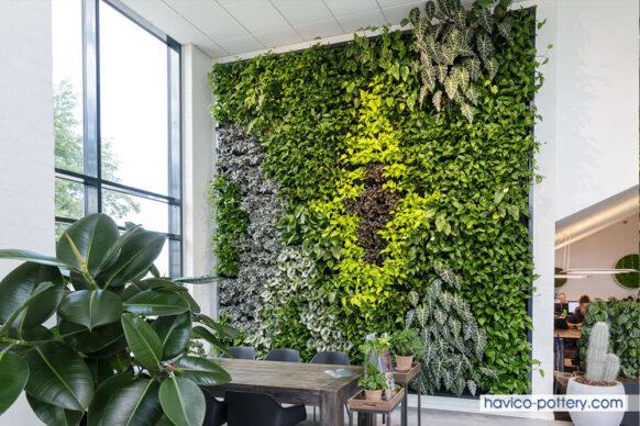 Vườn tường cây là gì?
