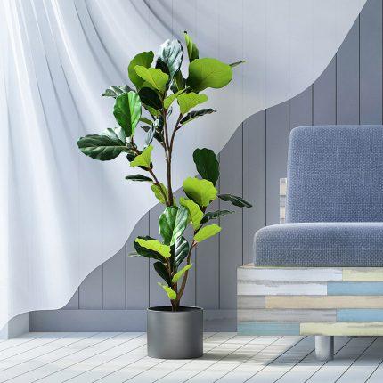 Cây bàng singapore giả - Cung cấp cây giả trang trí rẻ, bền, đẹp   Havico